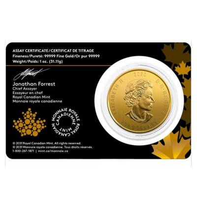 2020 1 oz Canadian Gold Bobcat - Call of the Wild $200 .99999 Fine Gold (In Assay)