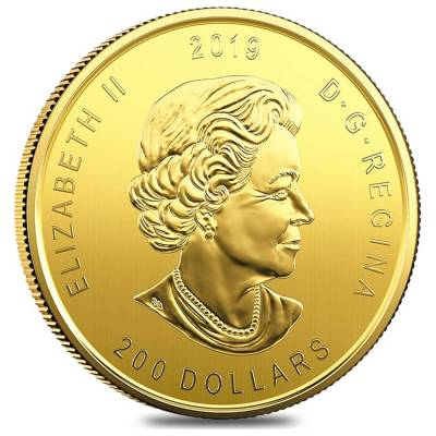 1 oz Canadian Gold Moose - Call of the Wild $200 .99999 Fine Gold (In Assay)