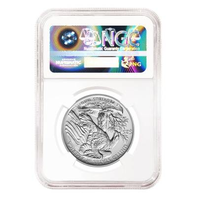 2017 1 oz Palladium American Eagle NGC MS 70 First Day of Issue