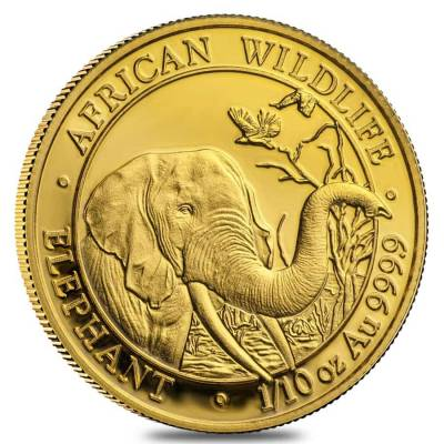 1/10 oz Somalia African Elephant Gold Coin BU/Proof (Random Year)