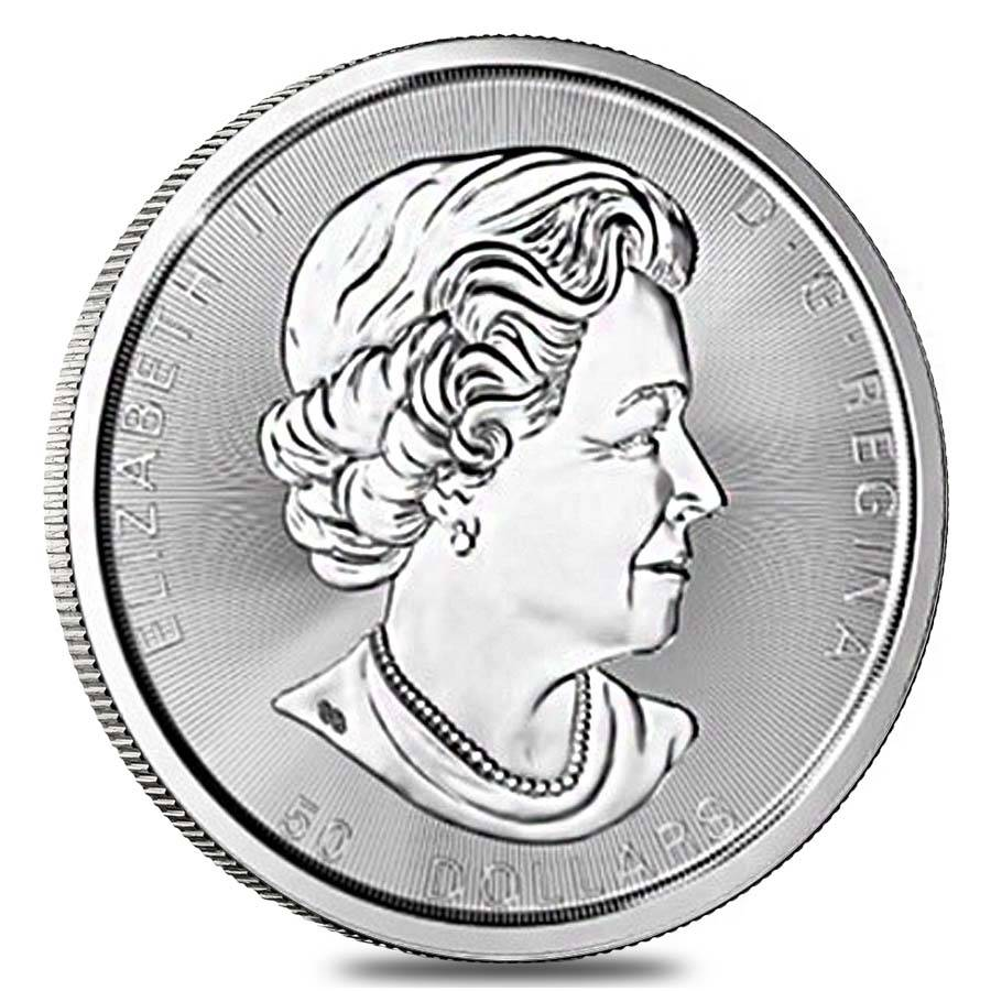 2017 10 Oz Silver Canadian Tree Of Life 50 Coin