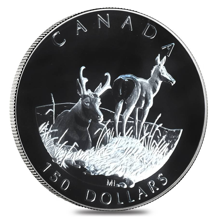 2000 canada oz proof platinum pronghorn antelope 4 coin set. Black Bedroom Furniture Sets. Home Design Ideas