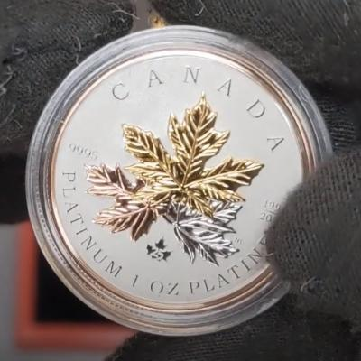 2021 Canada Tribute to the Maple Tree Platinum Coin Unboxing at Bullion Exchanges