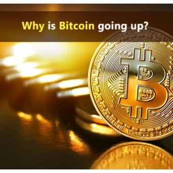 Why is Bitcoin going up?